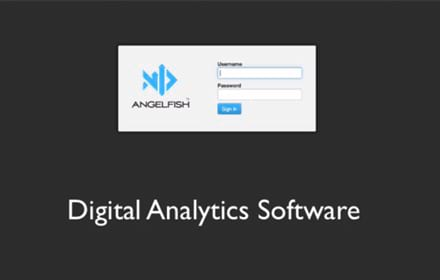 Angelfish Software in 30 Seconds